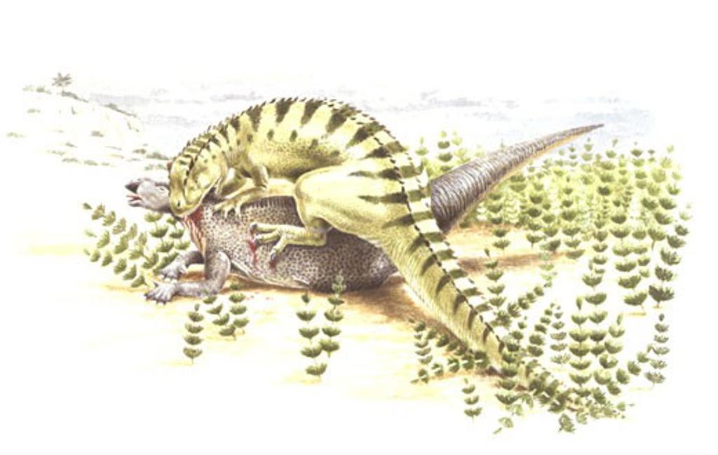 Illustration of Iguanodon attacking prey : Stock Photo