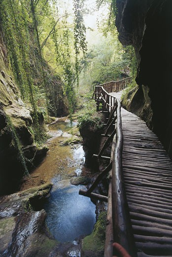 Stock Photo: 1788-6622 Italy - Veneto Region - Cansiglio Forest - Calieron Caves