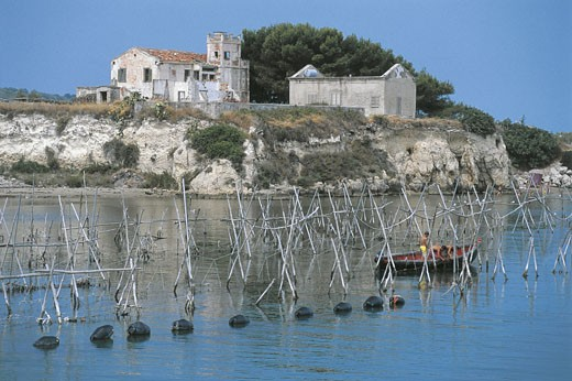 Italy - Apulia Region - Gargano National Park - Capojale - Canal Harbor and Mussel Farming : Stock Photo