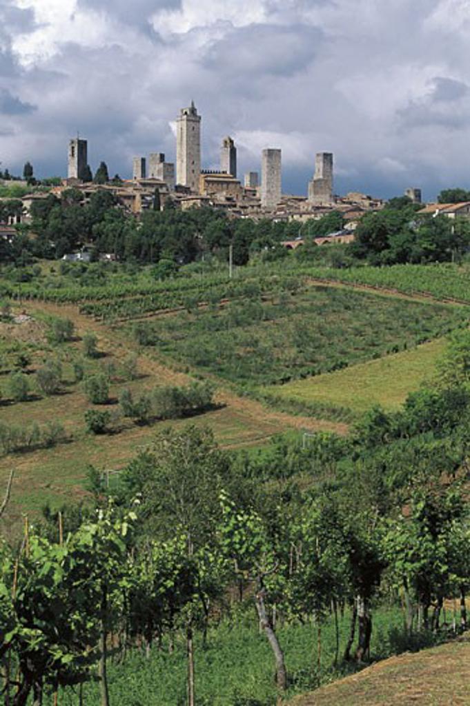 Stock Photo: 1788-7653 Italy, Tuscany Region, San Gimignano, medieval towers