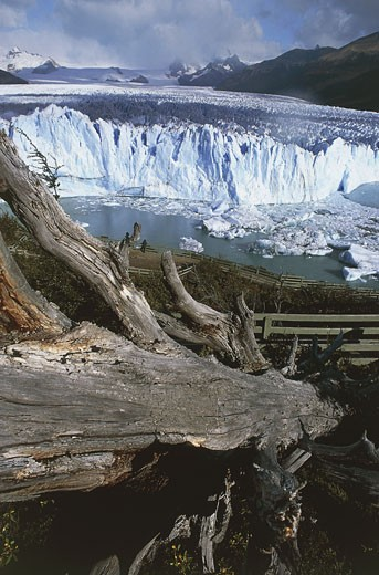 Argentina, Patagonia, Los Glaciares National Park (UNESCO World Heritage List, 1981). Perito Moreno Glacier : Stock Photo