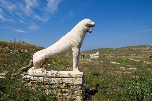 Greece, Delos Island, listed as World Heritage by UNESCO, archeological site of Delos, Appolo´s Sanctuary, God of beauty and light, the biggest antique city of Aegean sea, Lion district, Lions terrace : Stock Photo