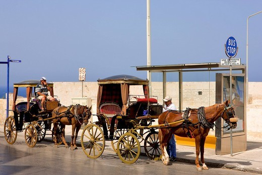 Malta, horse cartes for tourists transportation : Stock Photo