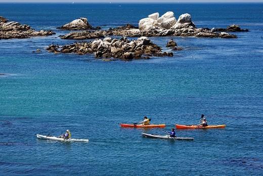 United States, California, Monterey Peninsula, Monterey, hiking sea kayaking in the bay : Stock Photo