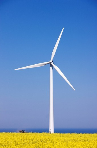 Stock Photo: 1792-105331 France, Seine Maritime, Pays de Caux, Cote d´Albatre, Fecamp, wind turbines in front a rape field