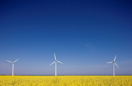 Stock Photo: 1792-105337 France, Seine Maritime, Pays de Caux, Cote d´Albatre, Fecamp, wind turbines in front a rape field