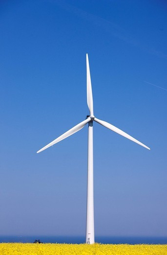 Stock Photo: 1792-105339 France, Seine Maritime, Pays de Caux, Cote d´Albatre, Fecamp, wind turbines in front a rape field