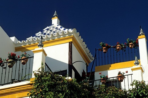 Stock Photo: 1792-106647 Spain, Andalusia, Sevilla, Santa Cruz District, detail of a flowered balcony on Dona Elvira square