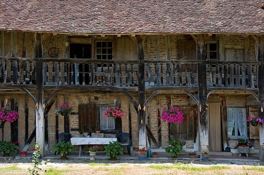 Stock Photo: 1792-111103 France, Saone et Loire, Juif, La Grange farm Grosse Bressane traditional floor and timbered