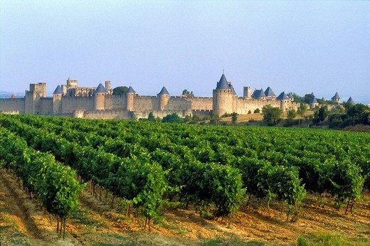 France, Aude, Carcassonne, listed as World Heritage by UNESCO, the city of Carcassonne is a unique exemple of Medieval architecture in Europe : Stock Photo