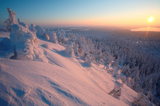 Finland, Lapland Province, Kuusamo, Ruka Jarvi, sunrise over the Taiga : Stock Photo