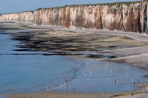 France, Seine Maritime, Saint Valery en Caux, the cliffs and the beach at low tide : Stock Photo