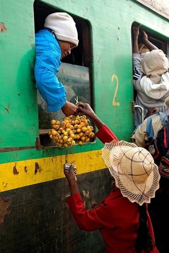 Madagascar, Highlands, former Province of Fianarantsoa, train FCE at a stop in a village between Fianarantsoa and Manakara : Stock Photo
