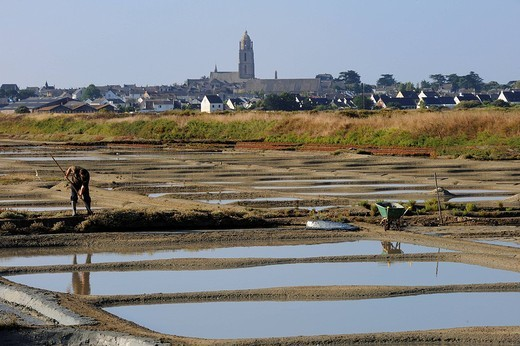 France, Loire Atlantique, Presqu´ile de Guerande, Batz sur Mer, salt marshes : Stock Photo