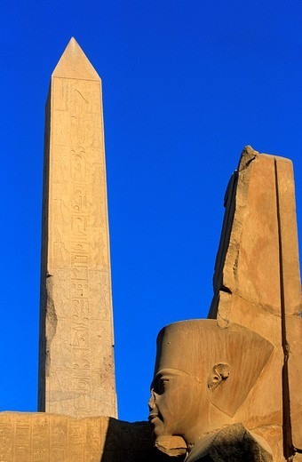 Egypt, Upper Egypt, Upper Egypt, Nile Valley, Luxor, Karnak listed as World Heritage by UNESCO, temple dedicated to Amon God, obelisk and Tutankhamun statue : Stock Photo
