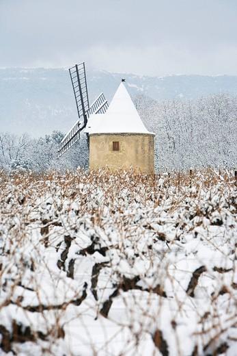 France, Vaucluse, Luberon, near Ansouis, Sannes, AOC Cotes du Luberon, mill in the vineyard under the snow : Stock Photo