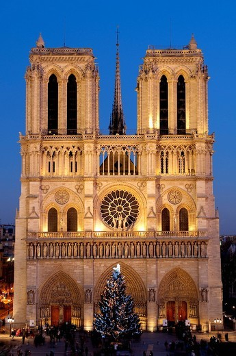France, Paris, Notre Dame cathedral illuminated and the christmas tree : Stock Photo