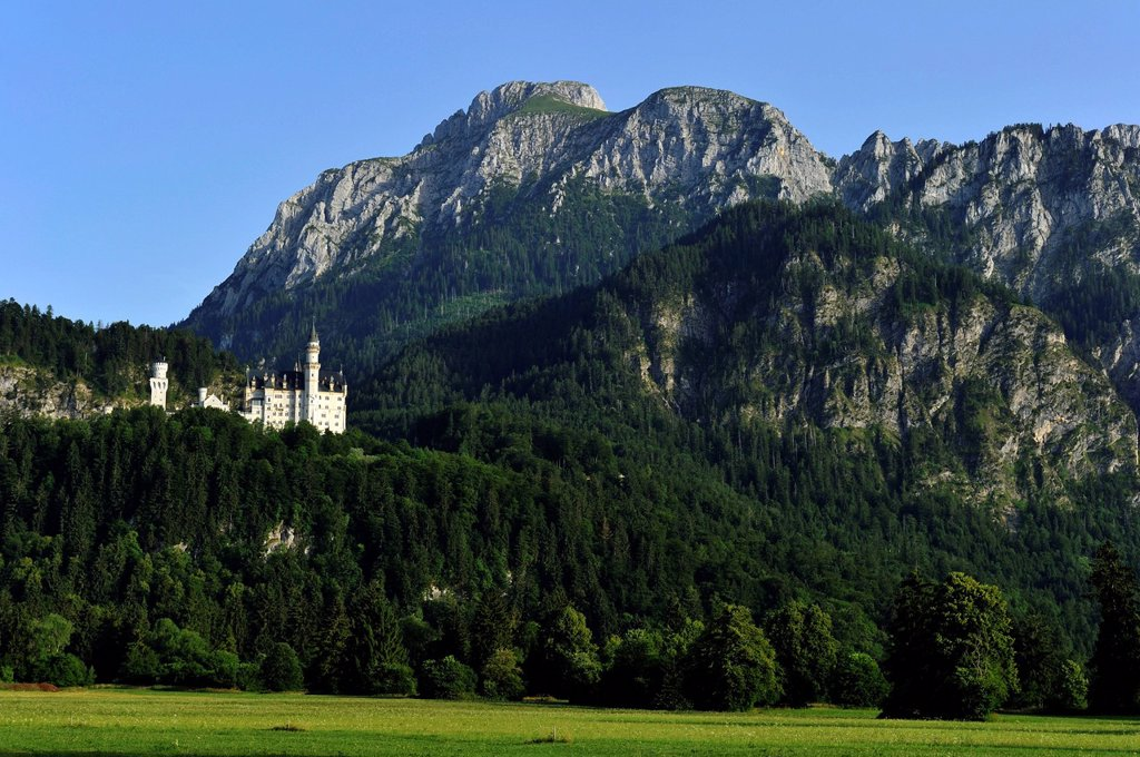 Germany, Bavaria, Schwangau, Neuschwanstein castle built between 1869 et1886 in the romantic style is the best known work of King Ludwig II of Bavaria : Stock Photo