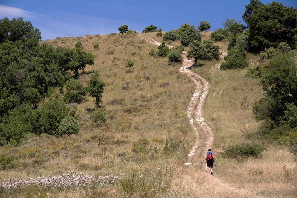 Stock Photo: 1792-126119 France, Ardeche, Plateau du Coiron, Saint Jean le Centenier, female hiker on a track