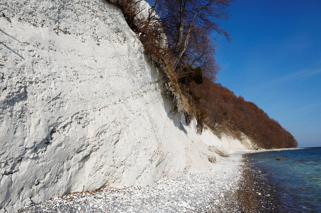 Stock Photo: 1792-126347 Germany, Mecklenburg_Western Pomerania, Ruegen island, National Park of Jasmund, listed as World Heritage by UNESCO, white´s chalk´s cliffs, pebble beach