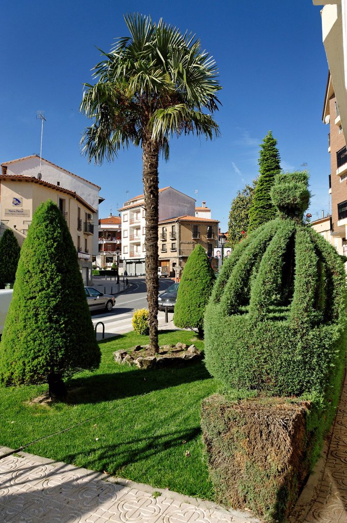Stock Photo: 1792-128271 Spain, Extremadura, Losar de la Vera, trimmed trees in the city on the main street has become tourist attraction
