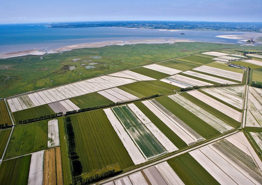 Stock Photo: 1792-138691 France, Manche, Bay of Mont Saint Michel, listed as World Heritage by UNESCO, Mont Saint Michel, polders area aerial view