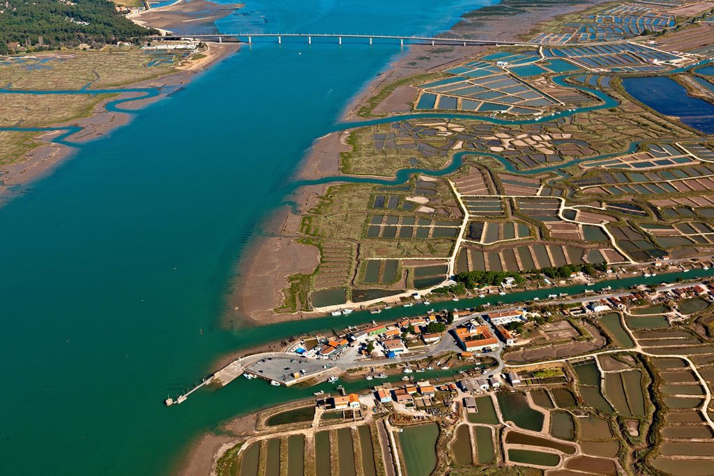 France, Charente Maritime, Marennes, la Cayenne harbour and the Seudre estuary aerial view : Stock Photo