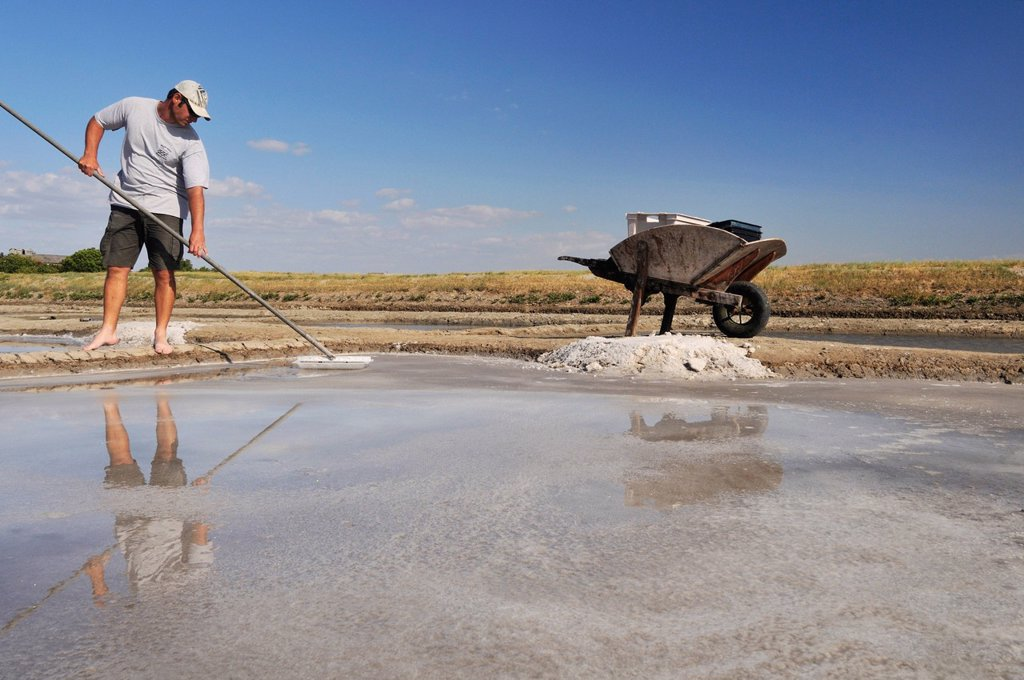 Stock Photo: 1792-143371 France, Charente Maritime, Saintonge, Mornac sur Seudre, labelled Les Plus Beaux Villages de France The Most Beautiful Villages of France, salt maker picking salt in his salt marsh