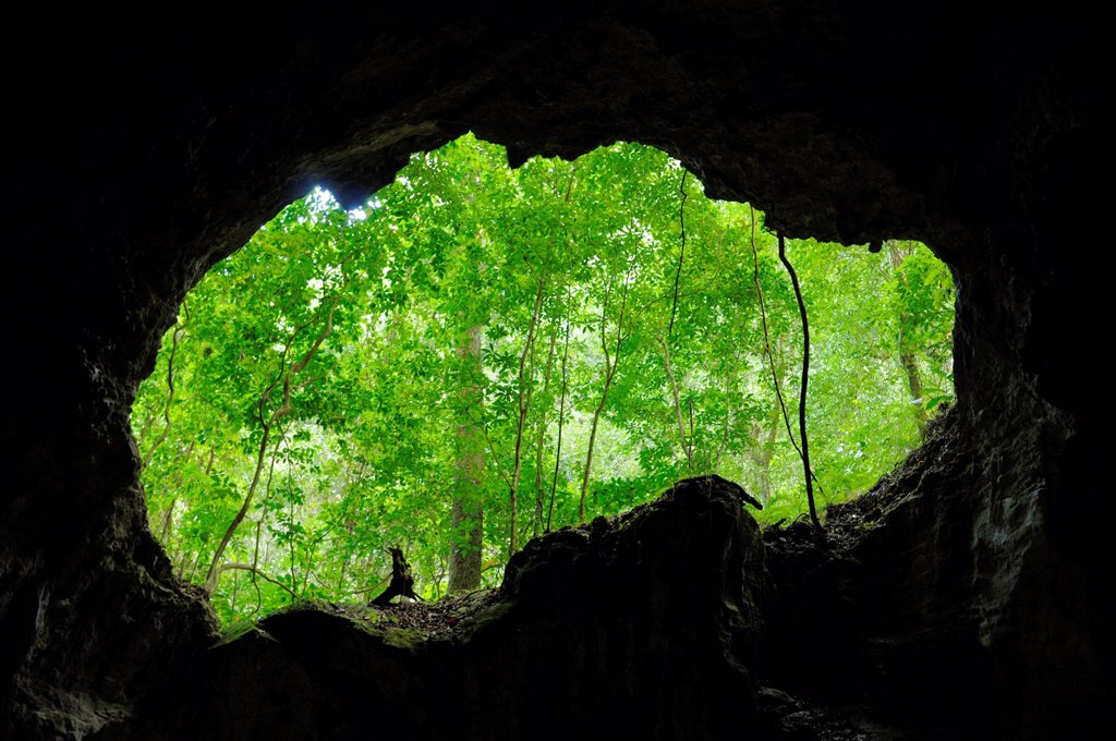 Stock Photo: 1792-145539 Dominican Republic, Samana peninsula, Taino Cave in the Haitises National Park