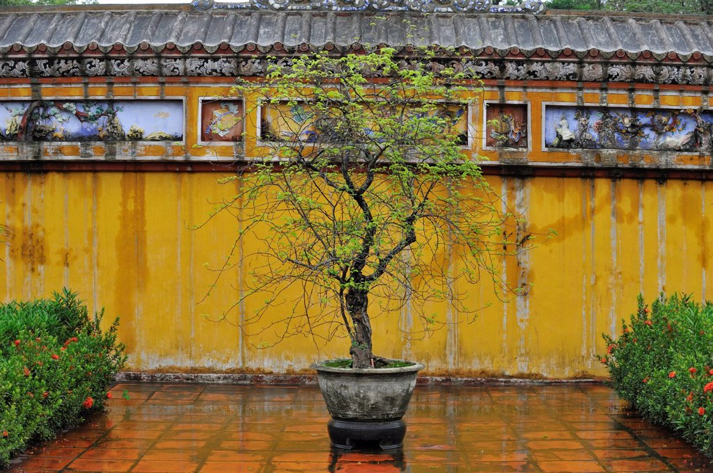 Vietnam, Thua Thien Hue Province, Hue, listed as World Heritage by UNESCO, Imperial City, the Citadel built in the 19th century, Dien Tho Palace : Stock Photo