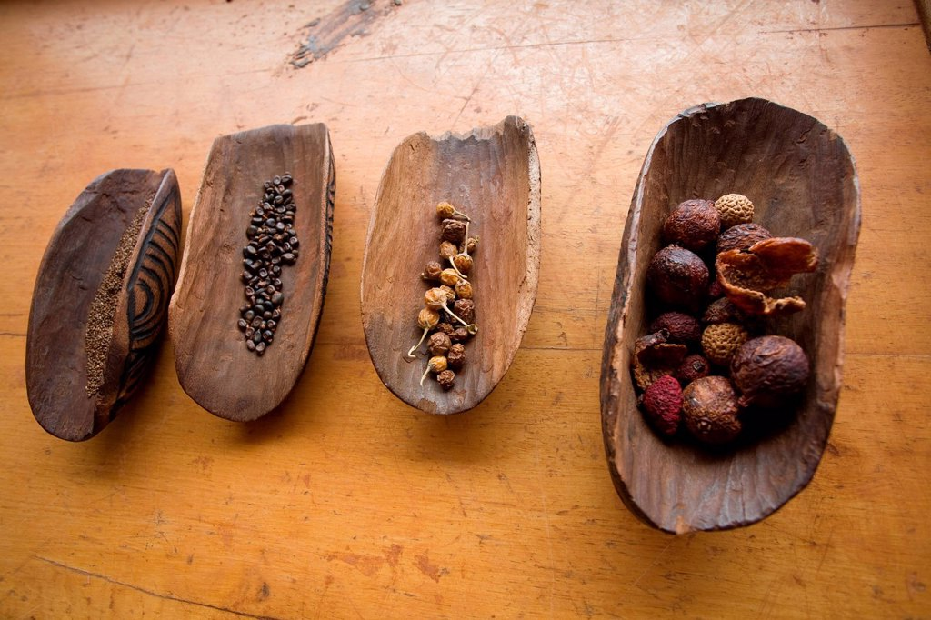 Australia, Northern Territory, Red Center, Alice Springs, various seeds traditionally used by the Aboriginal comunity : Stock Photo
