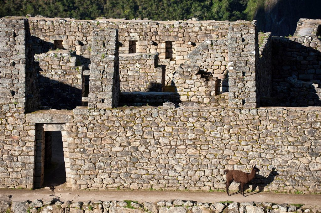 Stock Photo: 1792-153127 Peru, Cuzco Province, Incas sacred valley, Inca archeological site of Machu Picchu, listed as World Heritage by UNESCO, built in the 15th century under the reign of Pachacutec Pachacuti Inca Yupanqui, the site was discovered by explorer Hiram Bingham in 1. Peru, Cuzco Province, Incas sacred valley, Inca archeological site of Machu Picchu, listed as World Heritage by UNESCO, built in the 15th century under the reign of Pachacutec Pachacuti Inca Yupanqui, the site was discovered by explorer Hiram