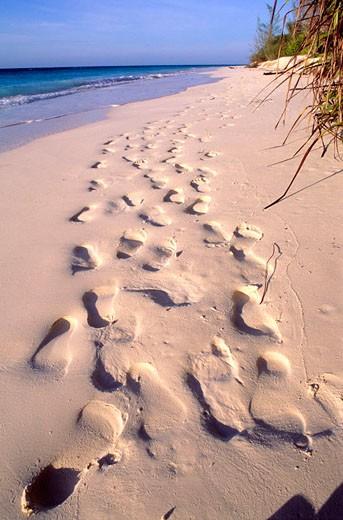 Tanzania, Zanzibar, Mnemba island : Stock Photo