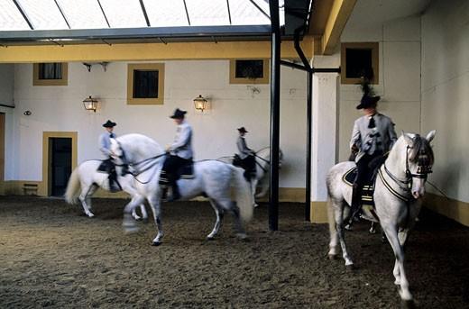 Stock Photo: 1792-35068 Spain, Andalusia, Jerez de la Frontera, the Royal Equestrian School
