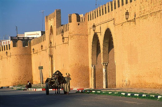 Tunisia, Kairouan holy city listed as World Heritage by UNESCO, ramparts : Stock Photo