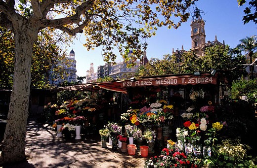 Stock Photo: 1792-39267 Spain, Valencia, Plaza del Ayuntamiento, flower seller
