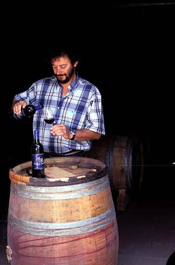 France, Gironde (33), tasting at a wine grower, Bordelais vineyard : Stock Photo