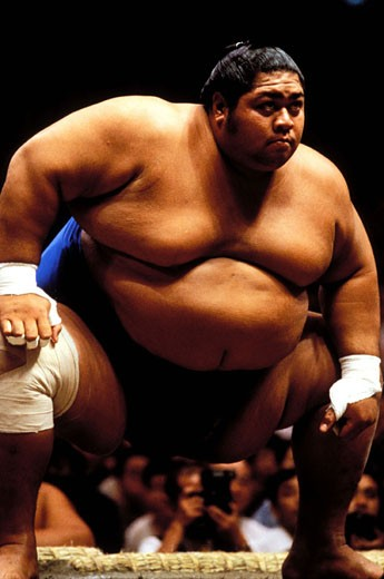 Japan, Honshu Island, Kanto region, Tokyo city, Sumo competition : Stock Photo