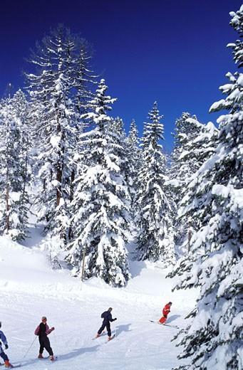 France, Savoie (73), La Plagne, ski resort : Stock Photo