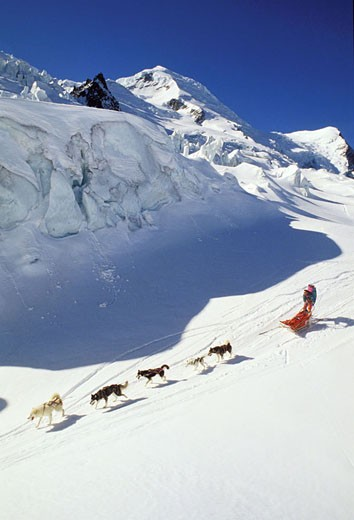 Stock Photo: 1792-44528 France, Savoie (73), climbing of mount blanc, sled dogs on grands mulets trail