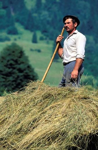 Stock Photo: 1792-45921 Romania, Bucovine region, a peasant charges the hay on his cart