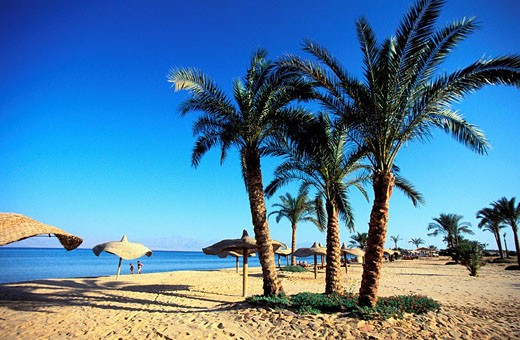 Egypt, Sinai Peninsula, the beach of Nuweiba, a little seaside resort in the Aqaba Gulf : Stock Photo