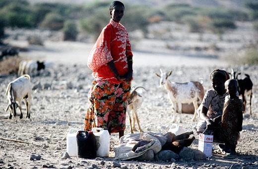 Djibouti, woman of Issas ethnic group in Djibouti : Stock Photo