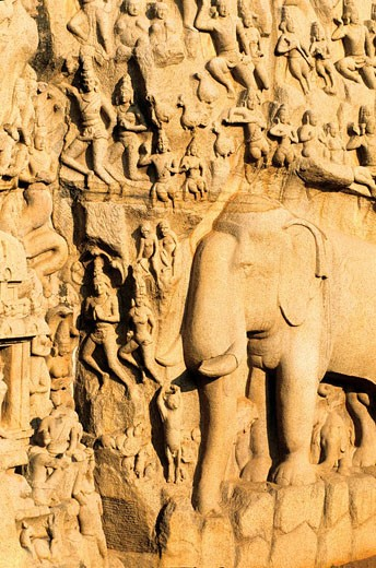 India, Tamil Nadu State, Mahabalipuram, low relief of Arjuna´s Penance the Descent of the Ganges, UNESCO World Heritage : Stock Photo