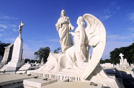 Cuba, Havana, Vedado District, Colon cemetery : Stock Photo