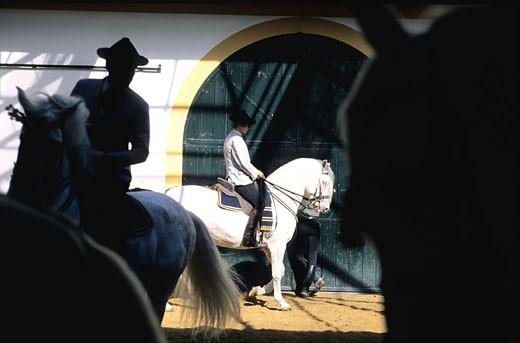 Spain, Andalusia, Jerez de la Frontera, the Royal Equestrian School : Stock Photo