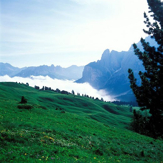 Italy, Dolomites Natural Park near Cortina d´Ampezzo : Stock Photo