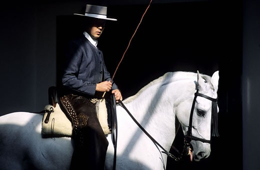 Spain, Andalusia, Jerez, Andalusian rider from the Equestrian Royal School : Stock Photo