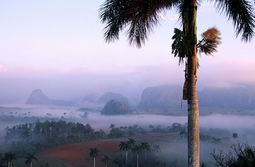 Cuba, Pinar del Rio Province, Vinales area, National Park, mogotes mountains : Stock Photo