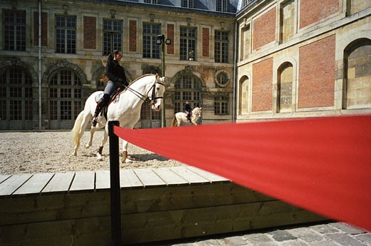 Stock Photo: 1792-57964 France, Yvelines (78), Versailles, Equestrian Arts Academy, training in the outside ring